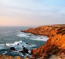 Seacoast near Cabo Sardao lighthouse, Alentejo, Portugal by Stanciuc