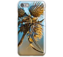 Beauty in lifeless nature iPhone Case/Skin