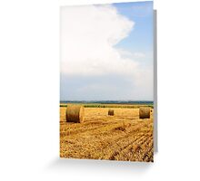 Golden Hay Bales on field after harvesting Greeting Card