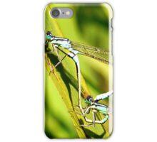 Damselflies Mating......... iPhone Case/Skin