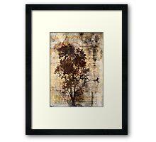 Trees sing of Time - Vintage Framed Print