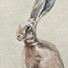 Spring Hare by Anita Murphy