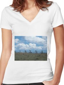 Fence to Heaven Women's Fitted V-Neck T-Shirt