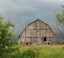 Abandoned wooden barn - Fitzroy Harbour, Ontario by Josef Pittner