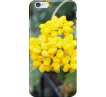 Starburst yellow flowers iPhone Case/Skin