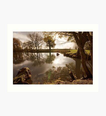 Surreal pond Art Print
