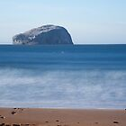 Bass Rock in blue by Christopher Cullen