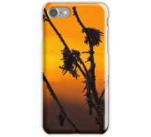 Warm frost iPhone Case/Skin