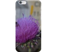Stinging nettle, a bee and a bug iPhone Case/Skin