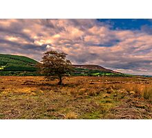 North Yorks Moors Photographic Print