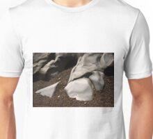 Point Lobos I Color Unisex T-Shirt