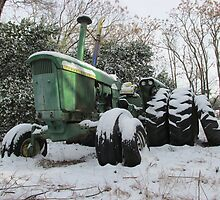 A Deere In The Snow by Michelle Burley