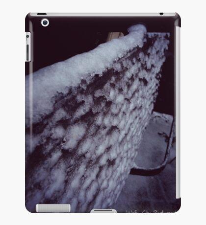 Ice Covered Seat iPad Case/Skin