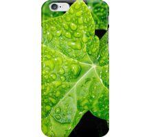 Wet Ivy iPhone Case/Skin