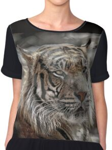 and Tigers and Bears Chiffon Top