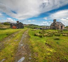 Welsh Cottage Ruins by Adrian Evans