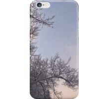 More Winter Trees  iPhone Case/Skin