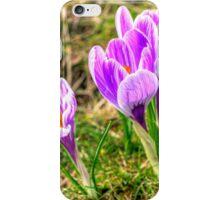 Spring Crocuses iPhone Case/Skin
