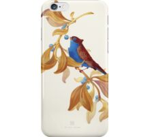 Blue birds song iPhone Case/Skin