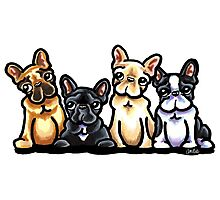 Fantastic Four Frenchies Photographic Print