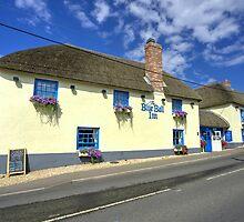 Blue Ball at Sidford  by Rob Hawkins