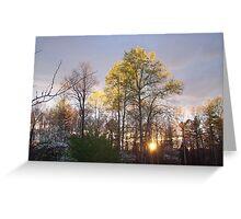Springtime Sunset Greeting Card