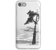 Winter Landscapes 1 iPhone Case/Skin
