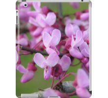 Redbud Blossoms iPad Case/Skin