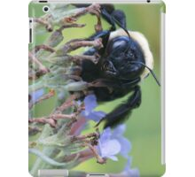 Bumble on Break iPad Case/Skin