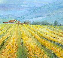Vineyard, Tuscany by Mary Faux Jackson by HurstPainters