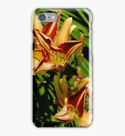 Day Lilies............. iPhone Case/Skin