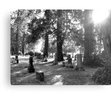 Fair Oaks Cemetery Black & White Metal Print