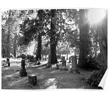 Fair Oaks Cemetery Black & White Poster