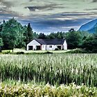 White Scottish Cottage - Oil Painting Effect by Glen Allen