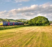 Teign Valley Sprinter  by Rob Hawkins