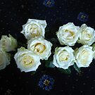 Angelic Roses by BlueMoonRose