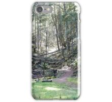 Another Path... iPhone Case/Skin