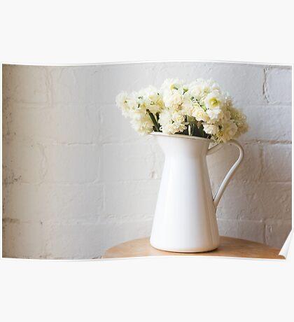 Erlicheer daffodils in white jug Poster