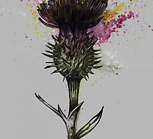 Thistle (Grey Background) by Rachel Kelly