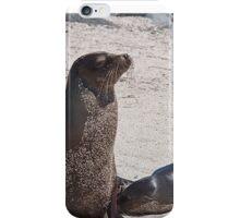 Ecuador. Galapagos Islands. Seals - mother & baby. iPhone Case/Skin