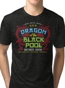 Dragon of the Black Pool Tri-blend T-Shirt