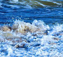 Plum Island Surf by christazuber