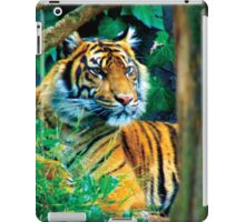 Tiger Photo iPad Case/Skin