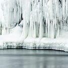 Frozen Beauty by April Koehler