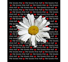 He Loves Me Daisy  Photographic Print
