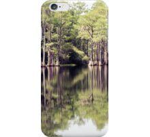 Florida Beauty 7 iPhone Case/Skin