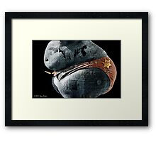 El Rashbo The Birthday Boy Framed Print