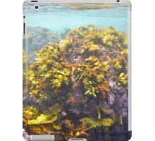 Sydney underwater iPad Case/Skin