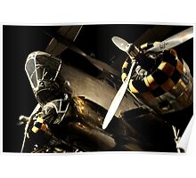 Beautiful Plane black and gold  Poster