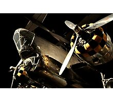 Beautiful Plane black and gold  Photographic Print